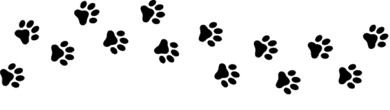 empreinte-patte-chat-chien-chiot-animal-trace_177006-39